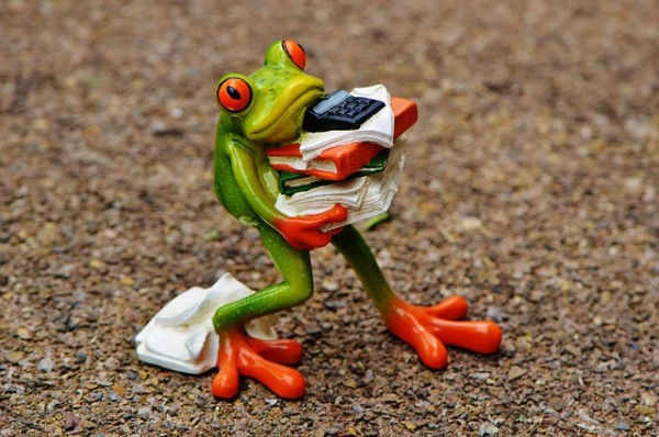 frog calculating lifetime value in PPC