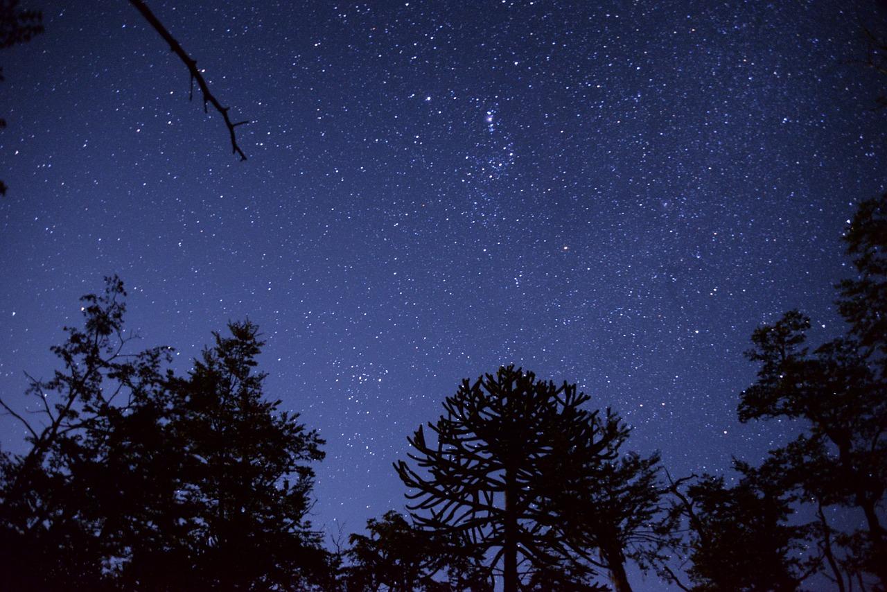 Night sky of stars wishing you to LTV and Prosper!